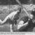 Nach Anlaufschwierigkeiten stark: Pitcher Thorsten Wöhner (im Hintergrund) führte seine TSV Wolfsburg Yahoos im ersten Spiel zum Sieg über Pulheim. Die grandiose Aufholjagd wurde belohnt. Foto: Britta Koropp